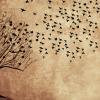 Aşkın Çöllerinde Kül Olur Yanar -şiir- Cemal Karsavran